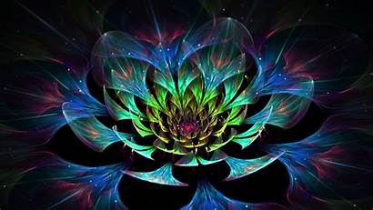 Abstract Colorful Digital Flowers Fractal Glowing Wallpapers