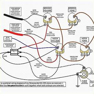 Wiring Diagram For Gibson 335