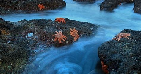 South Island New Zealand South Island Beautiful