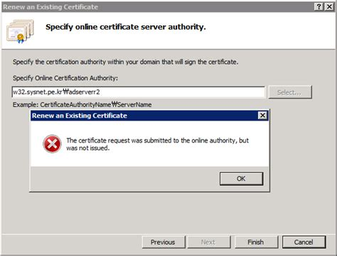 the request contains no certificate template 오류 유형 114 인증서 갱신 오류 the request contains no certificate template information