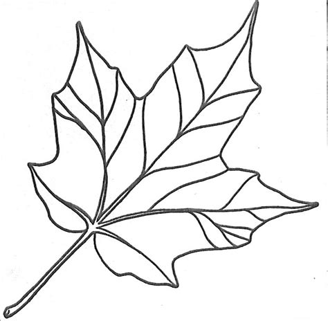 leaf print  az coloring pages