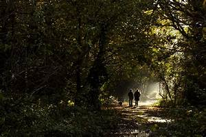 two people walking - Google Search | Psychotherapy and ...