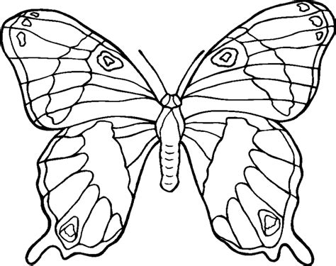 Animal Coloring Pages Category Printable Coloring Pages