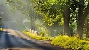 Download Wallpaper 1920x1080 Morning landscape, road, fog ...