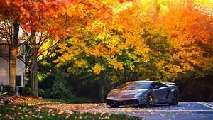 Full HD Wallpaper Lamborghini Gallardo Roadster Autumn