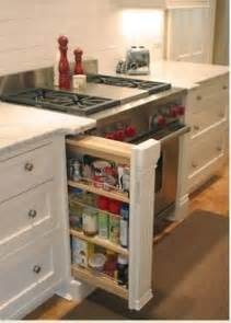 kitchen cabinets ideas for storage 1000 images about kitchen cabinet storage ideas on spice drawer pantry and spices