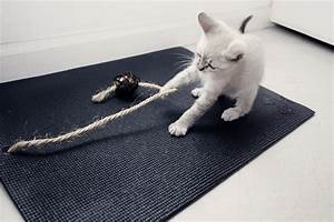 climsom tapis yoga cat With tapis yoga avec canape simon