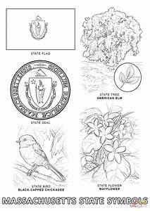 Massachusetts State Symbols Coloring Page Free Printable