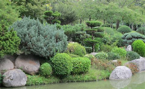 asian garden plants japanese gardens life in la ville rose