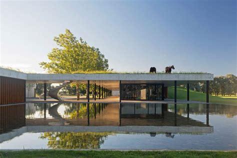 stunning modern stable treats horses  rooftop grazing