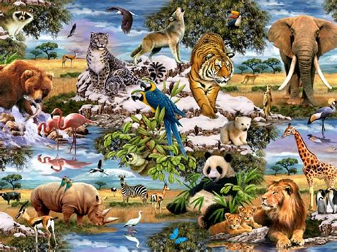 jungle animals  wallpapers jungle animals  stock