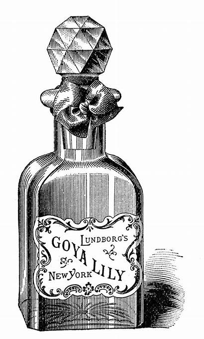 Perfume Bottle Poison Labels Fashioned Bottles Clip