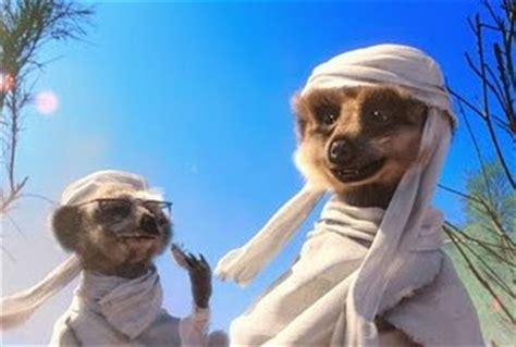 compare  meerkat advertising tv tropes