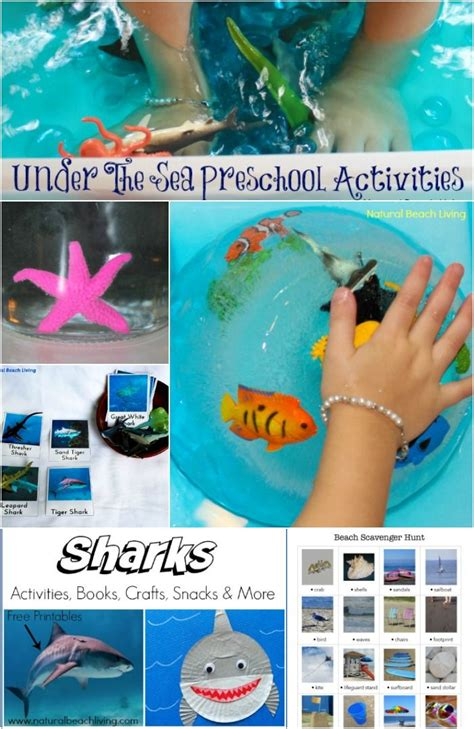 best 25 lesson plans ideas on 304 | 2f0c6fa8cebfb1313968d05e3fe3bbd2 sea activities activities for preschoolers