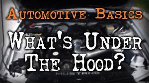 Car Basics - What U0026 39 S Under The Hood