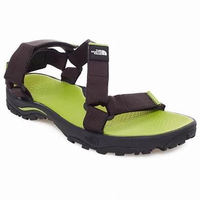 Face North Sandals Sandal Litewave Eu
