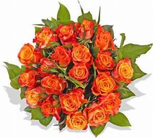 Gelb Rote Rosen Bedeutung : blumenversand blumenstrau rosenstrau gelb rote rosen ebay ~ Whattoseeinmadrid.com Haus und Dekorationen