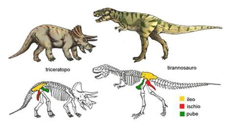 Giochi Di Dinosauri Volanti Dinosauri In Quot Enciclopedia Dei Ragazzi Quot
