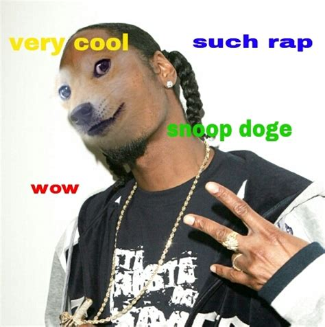 wow doge meme  state times