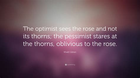 khalil gibran quote  optimist sees  rose