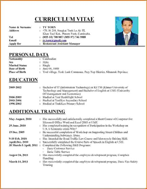 How To Write A Professional Cv Template by How To Make A Professional Cv Exles Letters Free