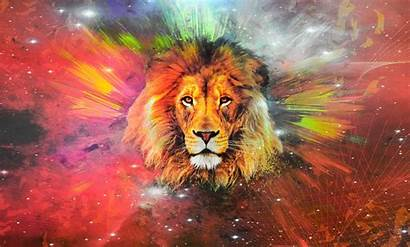 Lion Galaxy Wallpapers Leon 4k Fondos Pantalla
