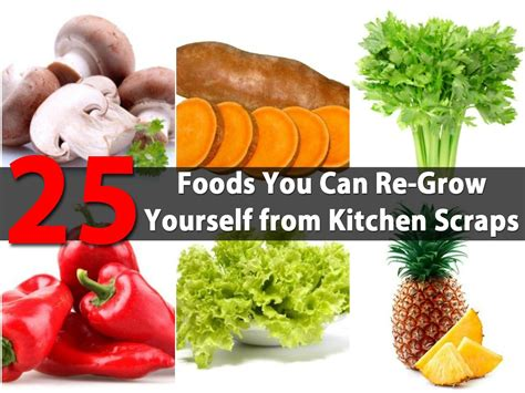 foods    grow   kitchen scraps