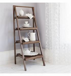 Outstanding Storage Ideas with a Ladder Shelving Unit