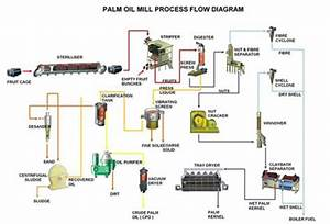 Palm Oil Mill Plant Flow Chart Introduction By Deahu T