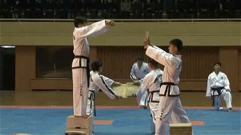 Korea Taekwondo GIF - Find & Share on GIPHY
