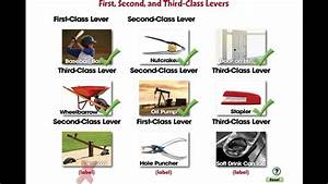 CC7555 Simple Machines: First, Second, and Third Class ...