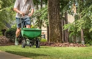 Rasen Düngen Herbst : schneiden pflanzen mulchen 5 gartenarbeiten im herbst ~ Watch28wear.com Haus und Dekorationen