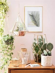 Pflanzen Terrarium Einrichten : wir wissen schon jetzt wie du deine wohnung im sommer einrichtest pflanzen designs und ~ Orissabook.com Haus und Dekorationen
