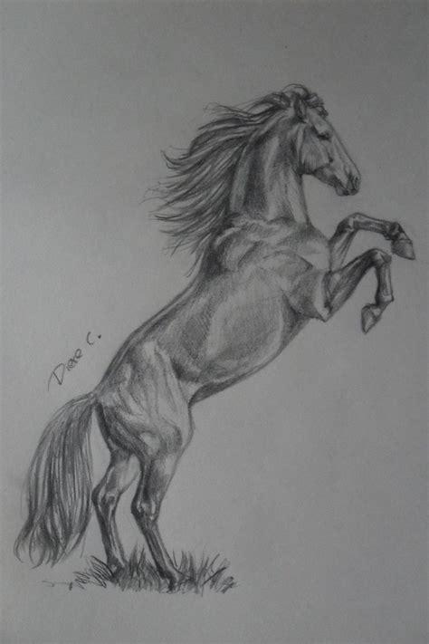 horse drawings  whysowhitedeviantartcom  atdeviantart
