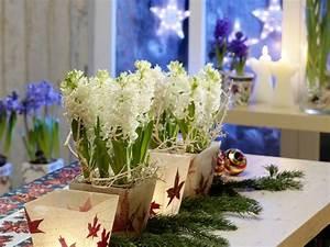 Weihnachtsdeko Für Geschäfte : stimmungsvolle weihnachtsdekoration f r den advent tipps ideen auf ~ Sanjose-hotels-ca.com Haus und Dekorationen