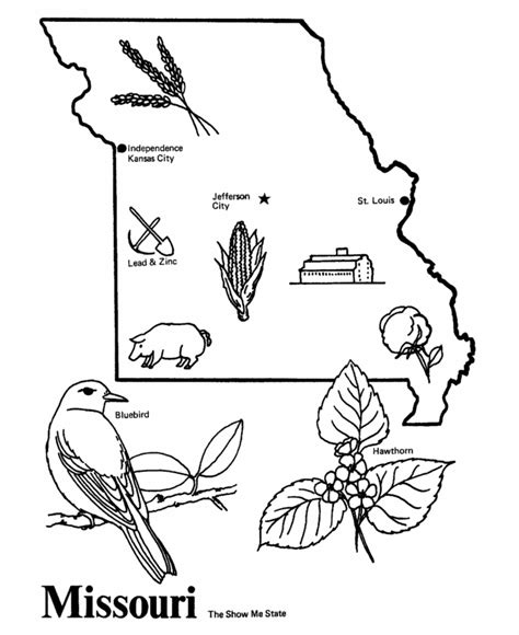 missouri state outline coloring page cc cycle  week