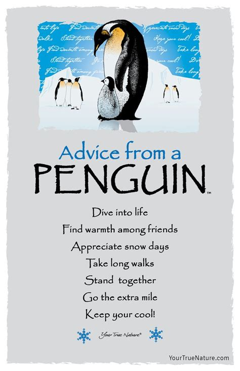 Going From Advice by Advice From A Penguin Frameable Postcard Your True