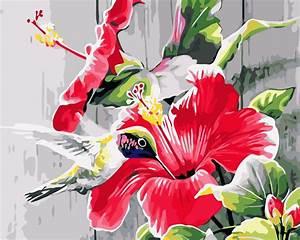 Popular Hummingbirds Picture-Buy Cheap Hummingbirds