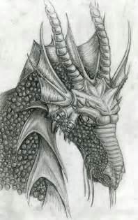 Sketch Pencil Drawing Dragons