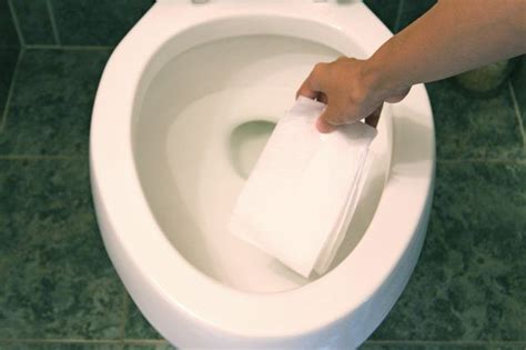 rid   severely stained toilet bowl hunker