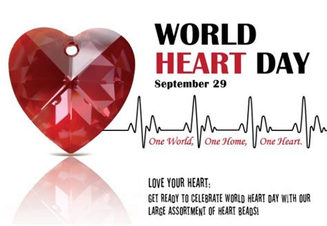 happy world heart day  hd wallpaper  sep images