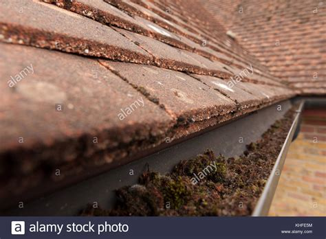 Rainwater Downpipe Stock Photos & Rainwater Downpipe Stock Red Roof Inn Mount Laurel New Jersey Independent Roofing Consultants Winter Springs Liquid Rubber White Epdm Coating Is My Asbestos Metal Ridge Cap Installation Independence Mo Inspire Reviews