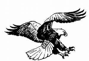 Free Eagle Clip Art Pictures - Clipartix
