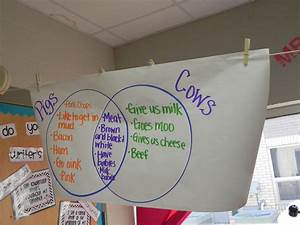 Mrs  Burgin U0026 39 S Kindergarten Class