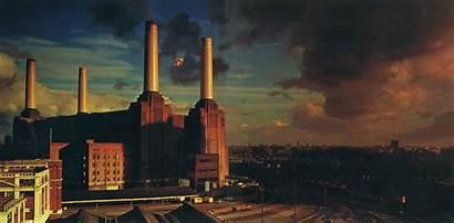 Floyd Pink Animals Album Covers Pigs London