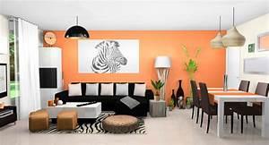 Decoration Mur Interieur Salon : cuisine d co maison mur orange decoration mur interieur ~ Dailycaller-alerts.com Idées de Décoration