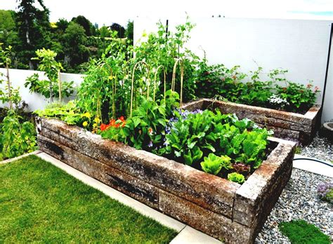 Home Design Ideas Decorating Gardening by Backyard Vegetable Garden Ideas Homelk