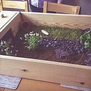 Fully set up wooden tortoise table - Happy Tortoise Habitats