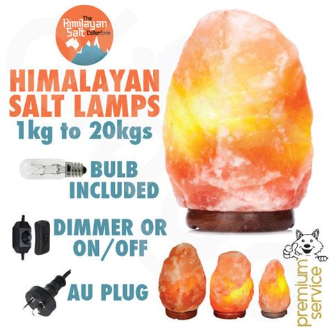 himalayan salt l light bulb himalayan salt lamp natural pink crystal available in 1 20