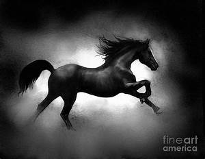Running Horse Painting by Robert Foster